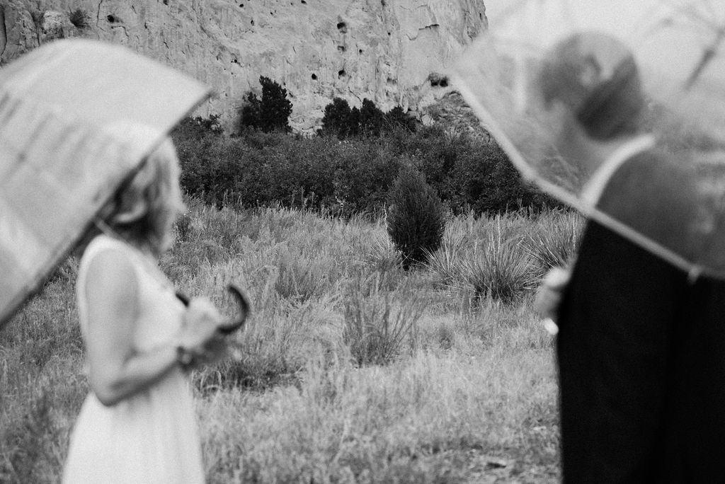 Couple looking at a deer in garden of the gods