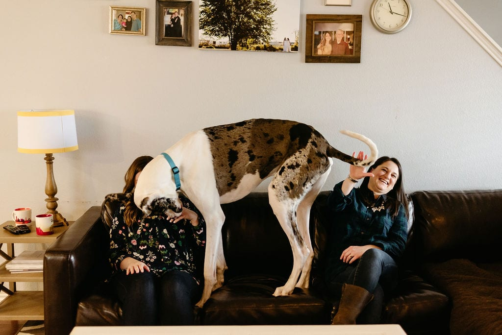 LGBTQ In Home Portrait Session with Great Dane