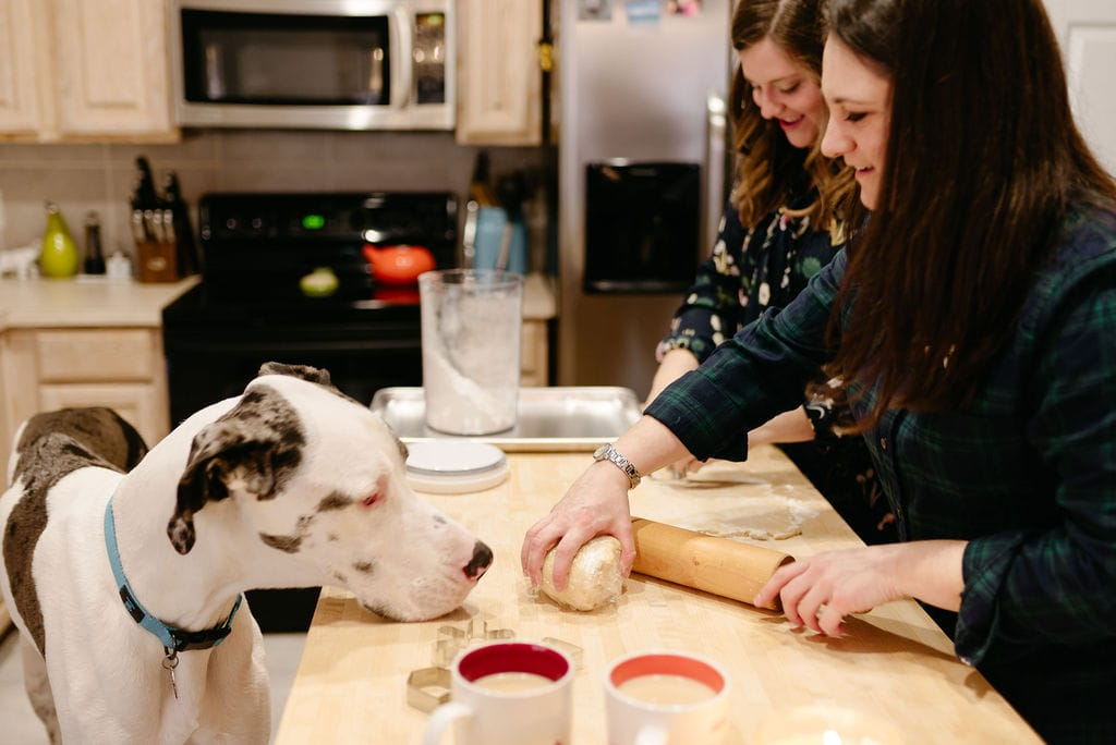 LGBTQ couple makes cookies in the kitchen with their great dane