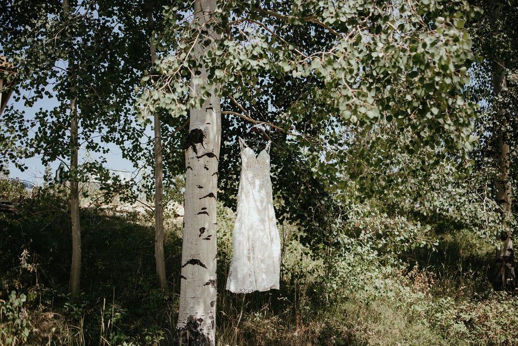 Wedding Dress Hanging From Aspen Tree
