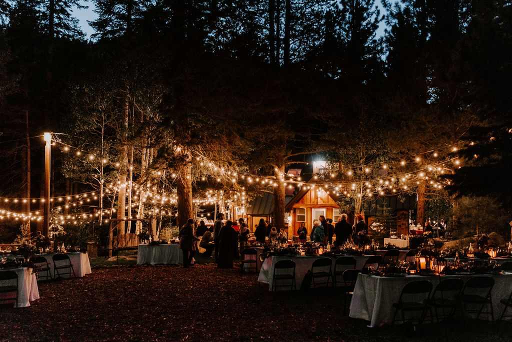 Romantic Wedding Reception in the Woods
