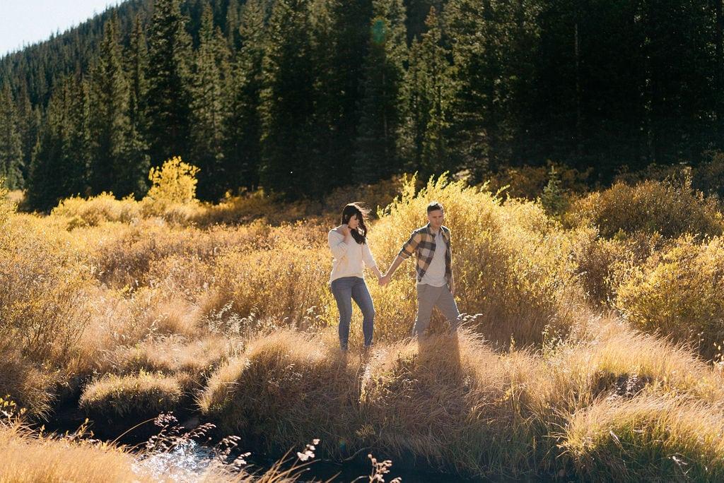 Guanella Pass Fall Colors