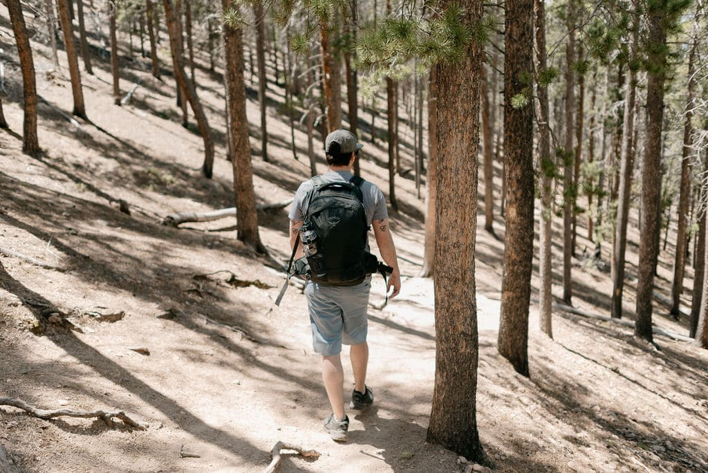 Wooded hiking trail in evergreen colorado
