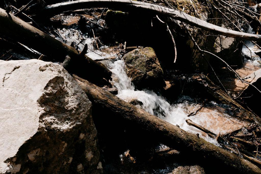 creek in evergreen
