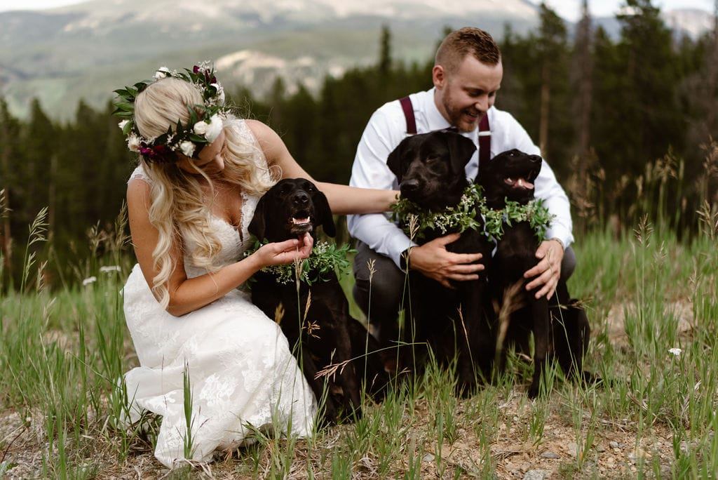 Bride and Groom with their Dogs at their Breckenridge wedding