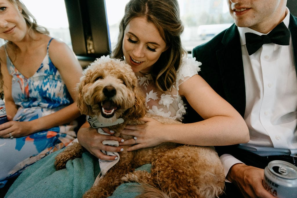Bride and her dog on a party bus on the way to their Boulder Colorado Elopement