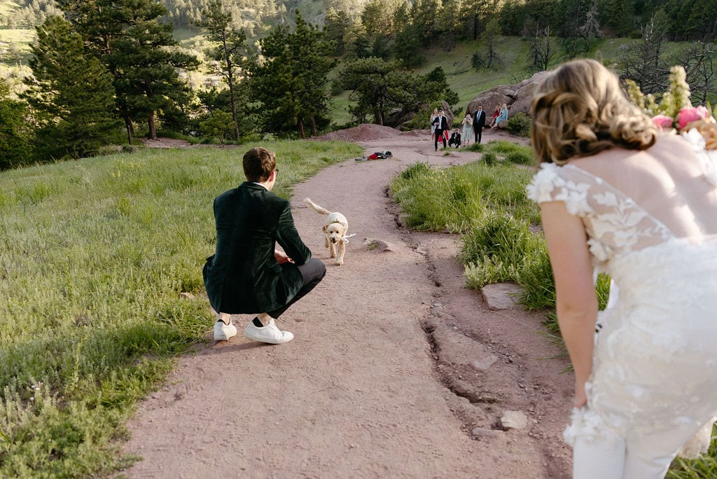 Dog greets couple after their bride and groom portraits